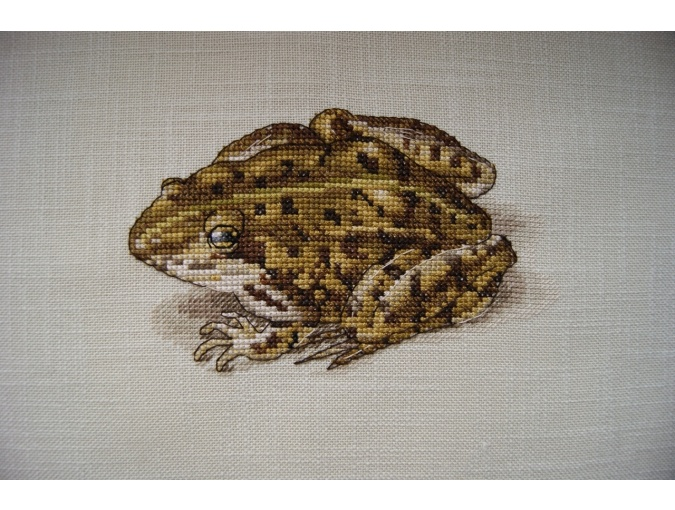 Froggy Cross Stitch Pattern фото 2