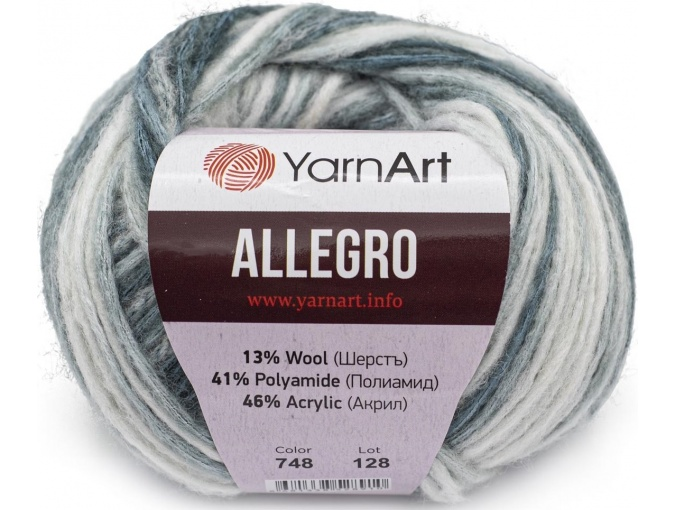 YarnArt Allegro 13% Wool, 41% Polyamid, 46% Acrylic, 10 Skein Value Pack, 500g фото 30