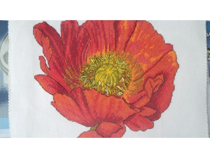 Bright Poppy Cross Stitch Pattern фото 5