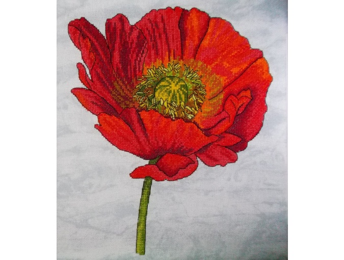 Bright Poppy Cross Stitch Pattern фото 2
