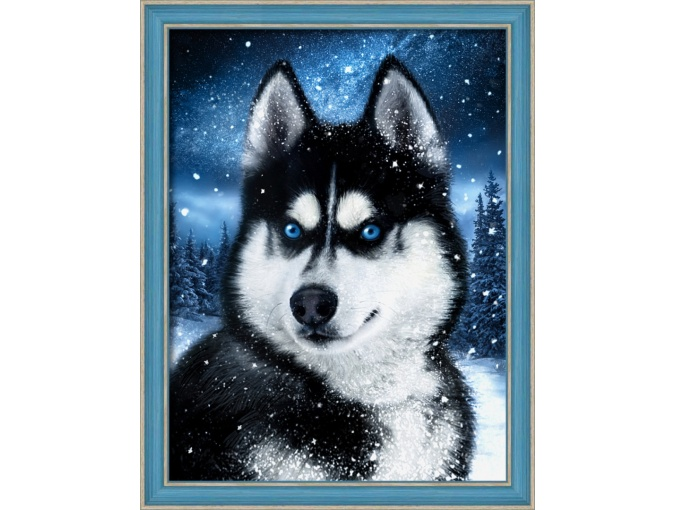 Husky in the Snow Diamond Painting Kit фото 1