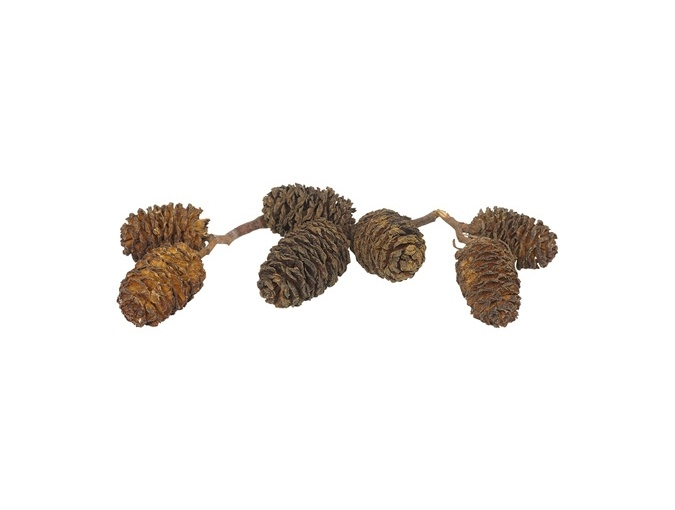 Decorative Pine Cones, 100g фото 1