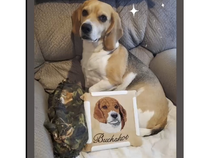 Beagle Cross Stitch Pattern фото 2