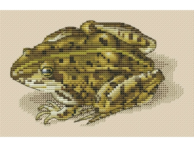 Froggy Cross Stitch Pattern фото 1