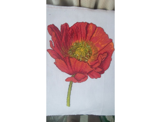 Bright Poppy Cross Stitch Pattern фото 3