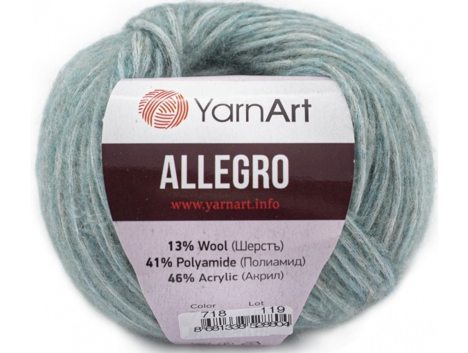 YarnArt Allegro 13% Wool, 41% Polyamid, 46% Acrylic, 10 Skein Value Pack, 500g фото 18
