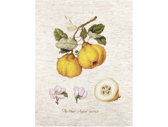 The Pear shaped Quince Cross Stitch Kit фото 1