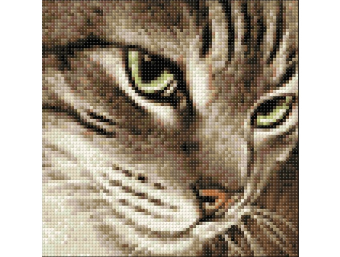 Mysterious Cat Diamond Painting Kit фото 2
