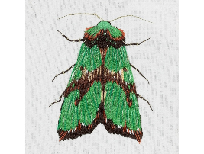 Green Moth Embroidery Kit фото 1
